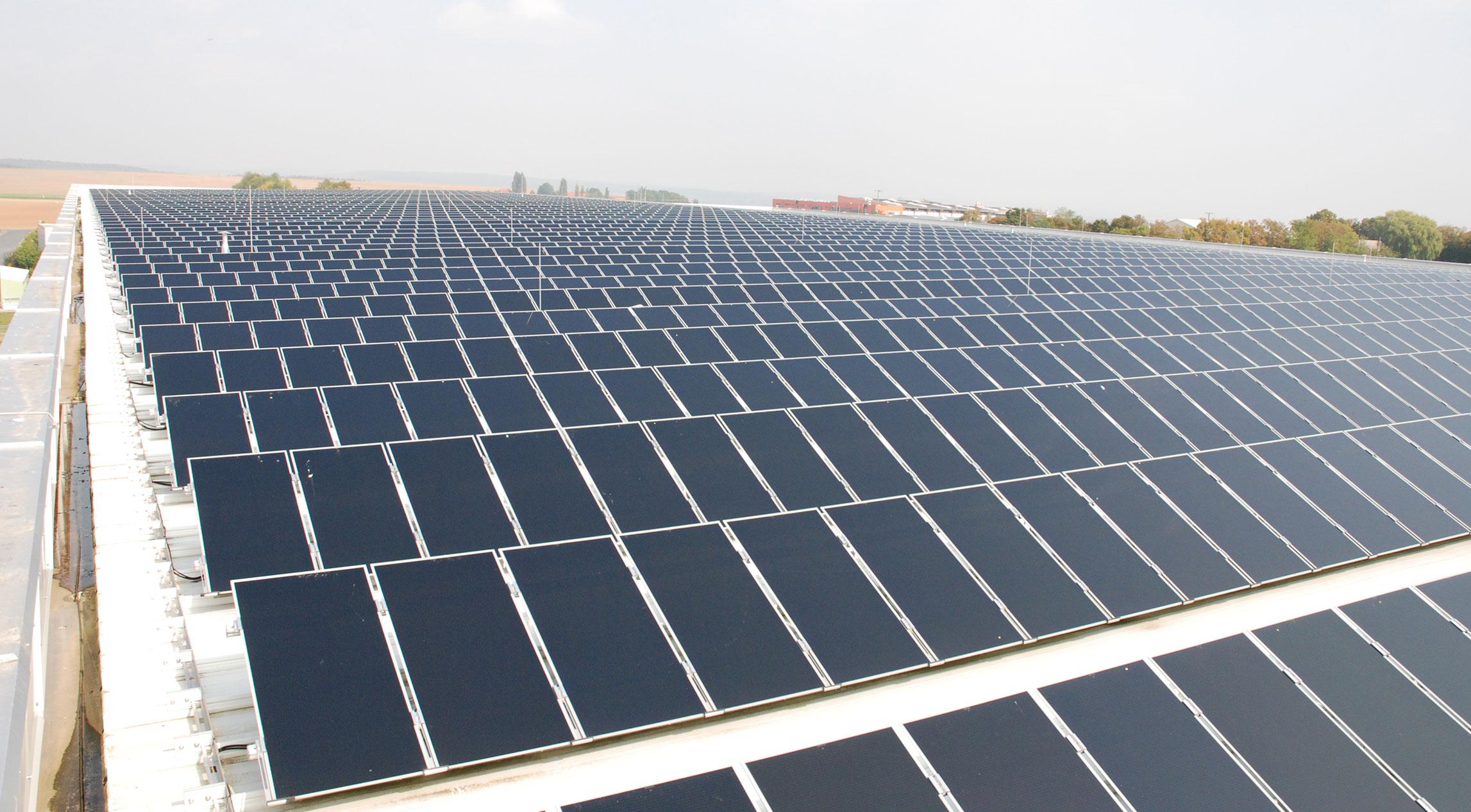 Viele Solarpanele
