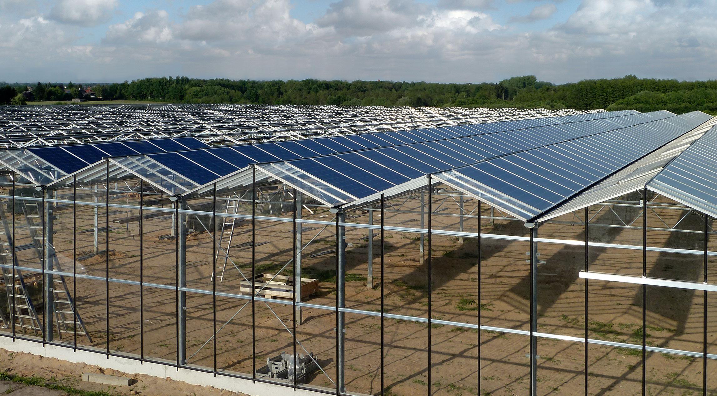Gewächshäuser mit Solarpanel-Dächern